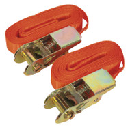 Sealey TD05045E Self-Securing Ratchet Tie Down 25mm x 4.5mtr 500kg Load Test - Pair