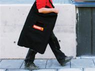 Telesteps TEL9129301 - Carry Bag