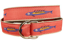 Hopkins Fish Ribbon Belt on Coral