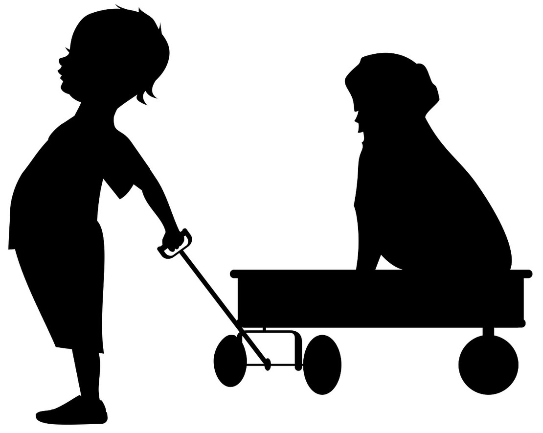 What to Consider When Purchasing a Wagon