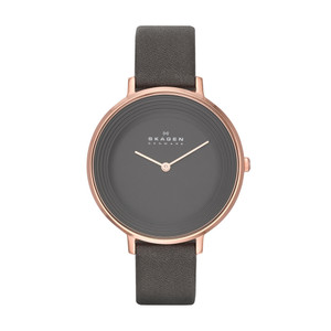 Skagen Ladies Ditte Watch SKW2216