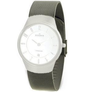 Skagen Replacement Titanium Mesh Watch Strap For 533STTW With Free Screws
