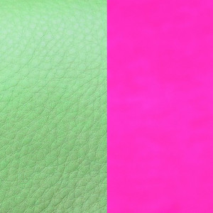 Les Georgettes Leather Insert Small Size in Menthol and Dayglo Pink