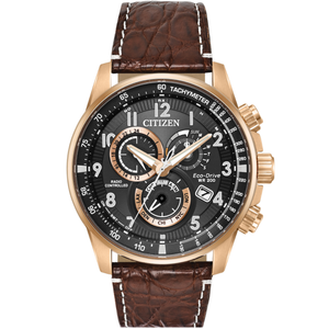 Citizen Eco-Drive Limited Edition Radio Controlled Perpetual Calendar Leather Strap Watch AT4133-09E