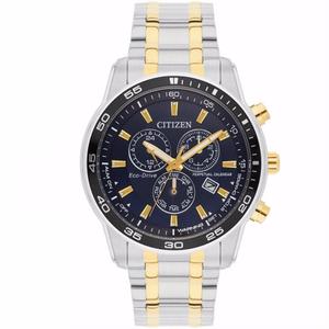 Citizen Eco-Drive Two-Toned Perpetual Calendar Watch BL5514-53L