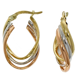 Fine Jewellery 9ct Multi-Colour Triple Oval Hoop Earrings 4109511