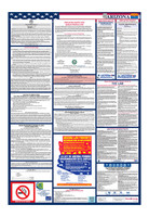 Arizona Total Labor Law Poster