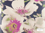 Black Edition - Eden Wallcovering Verbena  | Wallpaper, Wallcovering - Contemporary, Floral, Garden, Pink, Purple, Domestic Use, Print