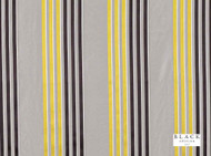 Black Edition  - Caselio Acacia  | Curtain Fabric - Black, Blue, Gold - Yellow, Grey, Eclectic, Natural fibre, Silk, Stripe, Black - Charcoal, Domestic Use, Natural