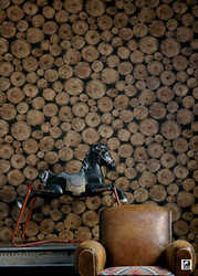 Andrew Martin Compass