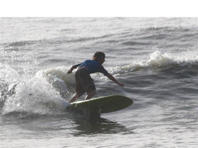 surfpics1.png