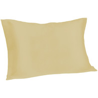 Spasilk 100% Silk Pillowcase, Standard/Queen, Champagne