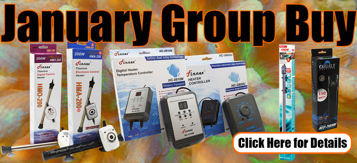 January Group Buy - Stay Warm! - Reef Central Online Community