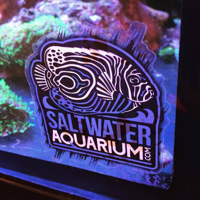 saltwateraquarium com logo sticker on clear limit 1 free item per