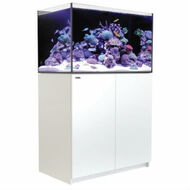 Reefer 250 - 65 Gallon White All In One Aquarium - Red Sea