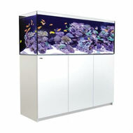 Reefer 525 XL - 139 Gallon White All In One Aquarium V3 Sump - Red Sea