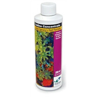 Iodine Concentrate (250 ml) - Two Little Fishies