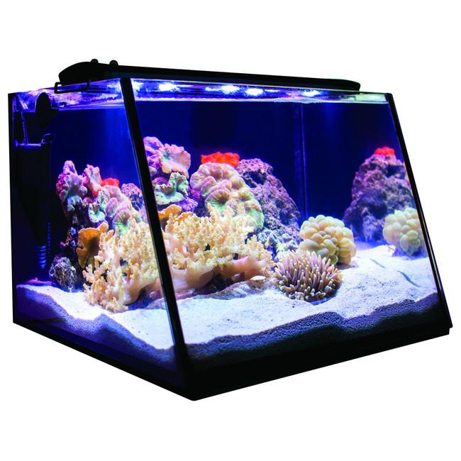 full view aquarium 5 gallon tank only lifegard