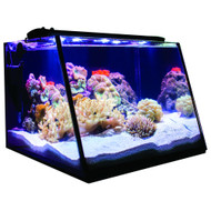 Full View Aquarium (5 Gallon) w/Overflow - Lifegard