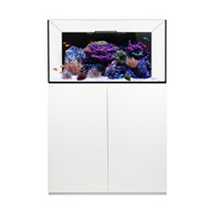 Reef 100.3 White - Waterbox