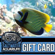 $25.00 Gift Certificate - SaltwaterAquarium.com