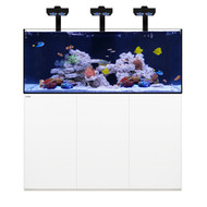 Reef PRO 190.5 White +Plus Edition - Waterbox