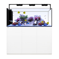 Peninsula 7226 White +Plus Edition - Waterbox
