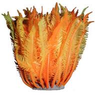 Caulerpa (Orange) Decoration - AZOO