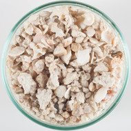 Aragonite Florida Dry Crushed Coral (15 lb) Sand Substrate - Caribsea
