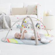 Skip Hop Silver Lining Cloud Unisex Baby Gym