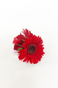 All red  wrist corsage designed with Gerbera Daisies and roses. This wedding design  brought to you custom designed by Earle's Loveland!