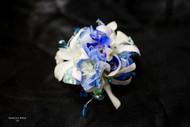 White Orchid, Blue Delphinium, Stone Accent Corsage