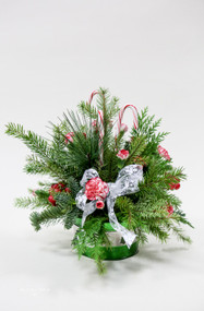Candy Cane Lane fresh flower Holiday Arrangement- shop locally at Earle's Loveland flowers and gifts