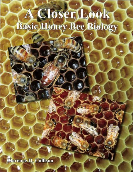 A Closer Look - Basic Honey Bee Biology