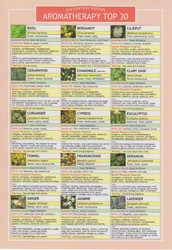 Aromatherapy Top 30 Information Resource Chart
