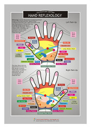 Hand Reflexology Information Resource Chart