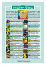 Homeopathy Remedies Information Resource Chart For Alternative Medicine