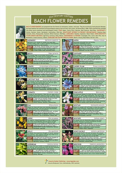Bach Flower Remedies Information Resource Chart