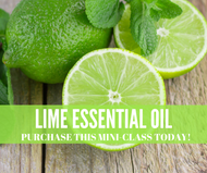 Lime Essential Oil Compliant Online Facebook Social Media Mini Class