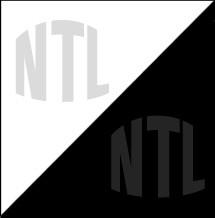 NTL Econo Plastisol Ink White & Black