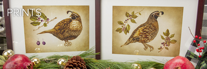Laura Zindel Prints
