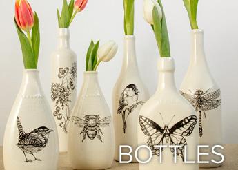 Bottles - Laura Zindel Designs