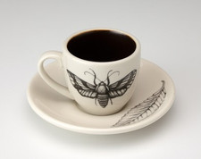 Espresso Cup and Saucer: Striped Moth
