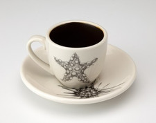 Espresso Cup and Saucer: Starfish