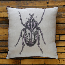 Decorative Pillow: Goliath Beetle
