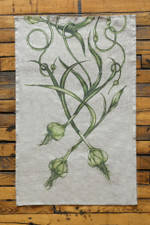 Tea Towel: Garlic