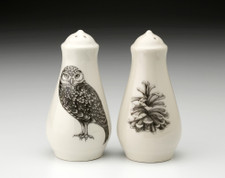 Salt and Pepper: Burrowing Owl