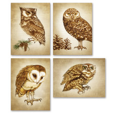 Note Cards: Woodland Collection Owls