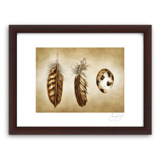 Prints : Quail Feathers and Egg, 11X14 Framed
