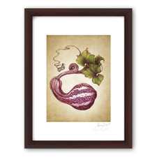 Prints : Curshaw Gourd, 11X14 Framed